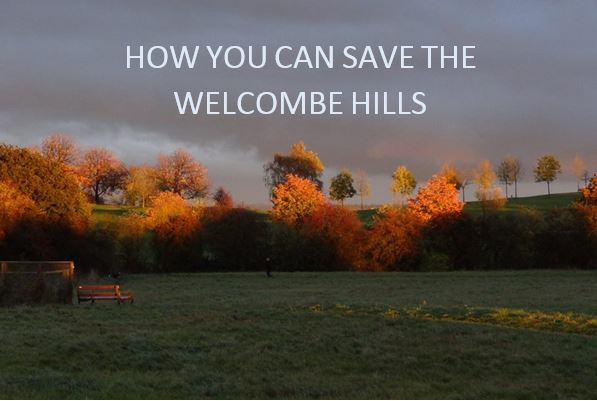 save the welcombe hills